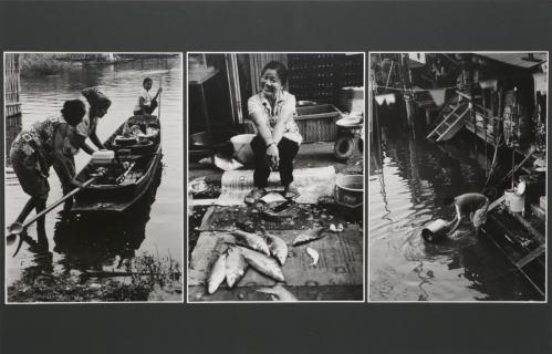 写真 「 メコン川に生きる 」 早田辰男 作
